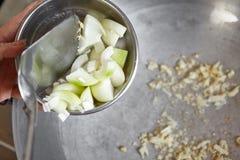 Ανακατώστε το κρεμμύδι τηγανητών Στοκ φωτογραφία με δικαίωμα ελεύθερης χρήσης