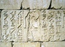 Ανακούφιση σε Sakkara, Αίγυπτος Στοκ Εικόνες