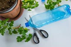 Ανακυκλωμένη πλαστική κηπουρική μπουκαλιών Τοπ άποψη του πλαστικού μπουκαλιού έτοιμη για την αφθονία με το χώμα, να φυτεψει τις ε στοκ εικόνα