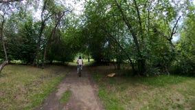 ανακυκλώνοντας πάρκο Κορίτσι που οδηγά ένα ποδήλατο σε ένα δασικό ίχνος απόθεμα βίντεο