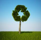 ανακυκλώστε το δέντρο Στοκ Φωτογραφίες