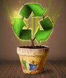 Ανακυκλώστε την ανάπτυξη σημαδιών από flowerpot Στοκ Φωτογραφίες