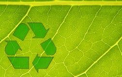 Ανακυκλώστε τη φύση στοκ φωτογραφίες