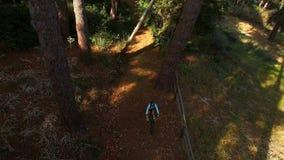 Ανακύκλωση οδοιπόρων στο δάσος απόθεμα βίντεο