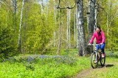 Ανακύκλωση στο δάσος Στοκ Εικόνα