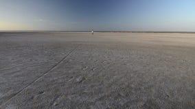 Ανακύκλωση στο ηλιοβασίλεμα στην αλατισμένη παραλία λιμνών απόθεμα βίντεο