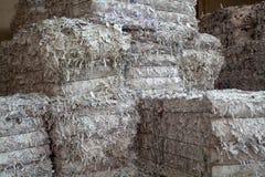 Ανακύκλωση της Λευκής Βίβλου Στοκ εικόνα με δικαίωμα ελεύθερης χρήσης