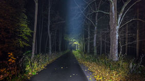 Αναμμένη πορεία με τα πεσμένα φύλλα τη νύχτα Στοκ Φωτογραφίες