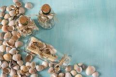 Αναμνηστικά όπως μπουκάλια με τα θαλασσινά κοχύλια εσωτερικό μικρό λευκό ποικιλίας διακοσμήσεων ανασκόπησης άρθρων Στοκ Εικόνες