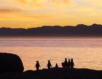 αναμονή αυγής Στοκ φωτογραφίες με δικαίωμα ελεύθερης χρήσης