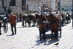 αναμονή της Βιέννης τουρι&sigm στοκ φωτογραφία