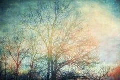 Αναμονή τη βροχή Στοκ εικόνες με δικαίωμα ελεύθερης χρήσης