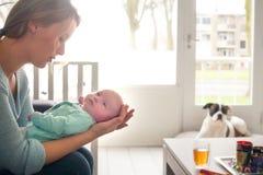 Αναμονή το γεύμα του μωρού στοκ εικόνες