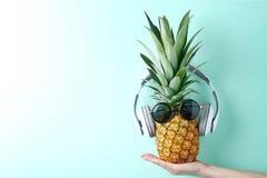 Ανανάς με τα γυαλιά ηλίου Στοκ Εικόνες