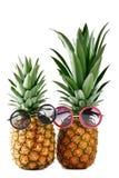 Ανανάς με τα γυαλιά ηλίου Στοκ φωτογραφίες με δικαίωμα ελεύθερης χρήσης