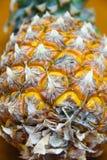 ανανάς Ταϊλάνδη κίτρινη Στοκ Εικόνες