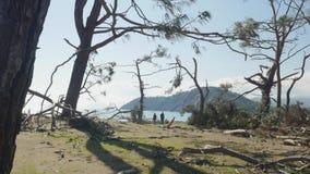 Αναπάντεχο κέρδος στη δασική ζημία θύελλας Πάρκο Τουρκία Phaselis φιλμ μικρού μήκους