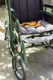 Αναπηρική καρέκλα για τους αρρώστους ή τα άτομα με ειδικές ανάγκες Αναπηρική καρέκλα για τους αρρώστους ή Στοκ Φωτογραφία