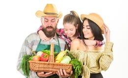 Αναπτυγμένος με την αγάπη Οι γονείς και η κόρη γιορτάζουν το απομονωμένο συγκομιδή λευκό λαχανικών κηπουρών οικογενειακών αγροτών στοκ εικόνα