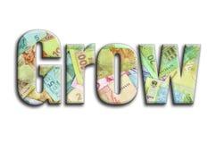 αναπτύξτε Η επιγραφή έχει μια σύσταση της φωτογραφίας, η οποία απεικονίζει πολλούς ουκρανικούς λογαριασμούς χρημάτων διανυσματική απεικόνιση
