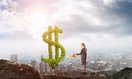 αναπτύξτε κάνει τα χρήματά σα διανυσματική απεικόνιση