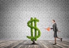 αναπτύξτε κάνει τα χρήματά σα απεικόνιση αποθεμάτων