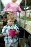 αναπτύξτε το φυτό το μικρό αγόρι με τη μητέρα αυξάνεται τις εγκαταστάσεις προσοχή εγκαταστάσεων το παιδί αυξάνεται το οικογενειακ στοκ φωτογραφία με δικαίωμα ελεύθερης χρήσης