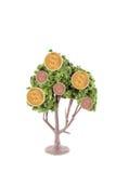 αναπτύσσοντας δέντρο χρημάτων Στοκ εικόνα με δικαίωμα ελεύθερης χρήσης
