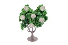 αναπτύσσοντας δέντρο χρημά&t Στοκ εικόνα με δικαίωμα ελεύθερης χρήσης