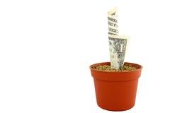 αναπτύσσοντας τα χρήματά σ&alph Στοκ εικόνες με δικαίωμα ελεύθερης χρήσης