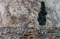 αναπτύσσοντας τα χρήματά σ&alph Στοκ φωτογραφία με δικαίωμα ελεύθερης χρήσης