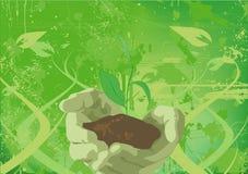 αναπτύσσοντας φυτό ελεύθερη απεικόνιση δικαιώματος