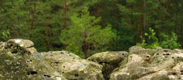 αναρρίχηση του βράχου σημαδιών του Φοντενμπλώ Στοκ Φωτογραφίες
