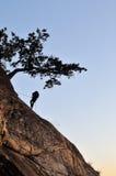 αναρρίχηση του βράχου σημ&e Στοκ εικόνες με δικαίωμα ελεύθερης χρήσης