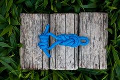 Αναρρίχηση του σχοινιού σε ένα φυσικό υπόβαθρο Στοκ Εικόνα