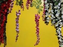 Αναρρίχηση των λουλουδιών φιλμ μικρού μήκους