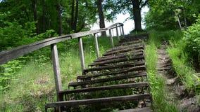 Αναρριχηθείτε upstair στα ξύλινα παλαιά σκαλοπάτια που περιβάλλουν την πράσινη χλωρίδα πλαισίου με φράκτη απόθεμα βίντεο