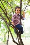 Αναρριχημένος σε ένα δέντρο στοκ φωτογραφία με δικαίωμα ελεύθερης χρήσης
