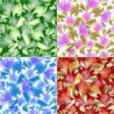 ανασκοπήσεις floral Στοκ εικόνες με δικαίωμα ελεύθερης χρήσης