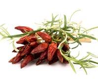 ανασκόπησης καυτό λευκό δεντρολιβάνου πιπεριών κόκκινο Στοκ φωτογραφία με δικαίωμα ελεύθερης χρήσης