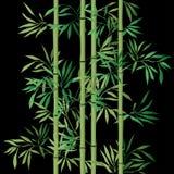 ανασκόπησης μακρο φλέβες φύλλων μπαμπού ακραίες floral άνευ ραφής σύσταση με τα φύλλα ελεύθερη απεικόνιση δικαιώματος