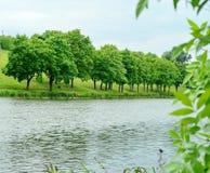ανασκόπησης πράσινο διάνυσμα φύσης τοπίων σύγχρονο Στοκ εικόνα με δικαίωμα ελεύθερης χρήσης