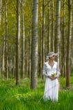 ανασκόπησης όμορφο φως απεικόνισης λουλουδιών δασικό Στοκ εικόνες με δικαίωμα ελεύθερης χρήσης