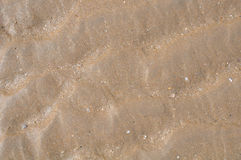 Ανασκόπηση άμμου Στοκ Εικόνες