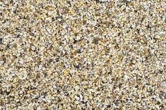 Ανασκόπηση αμμοχάλικου στοκ φωτογραφία