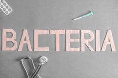 Ανασκόπηση βακτηριδίων στοκ εικόνα με δικαίωμα ελεύθερης χρήσης