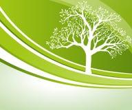 Ανασκόπηση δέντρων διανυσματική απεικόνιση