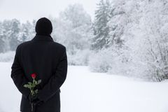 Ανασκόπηση ημέρας βαλεντίνων Το ρομαντικό άτομο κρύβει αυξήθηκε πίσω από την πλάτη του σε ένα υπόβαθρο ενός χειμερινού τοπίου Στοκ Φωτογραφίες