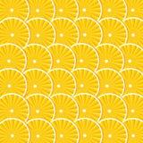 Ανασκόπηση με τα πορτοκάλια Στοκ Εικόνες
