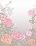 Ανασκόπηση με τα τριαντάφυλλα Λουλούδια Στοκ Φωτογραφία